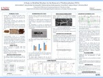 A Study on Modified Biochars for the Removal of Trichloroethylene (TCE)