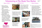 Volunteering at The Shade Tree Shelter by Charlene Clark
